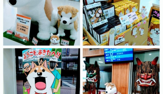 秋田空港は秋田犬がいっぱい