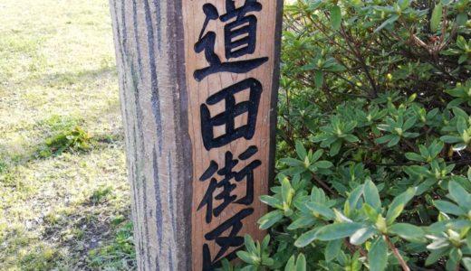今日は晴れ間を狙って「泉道田街区公園」に